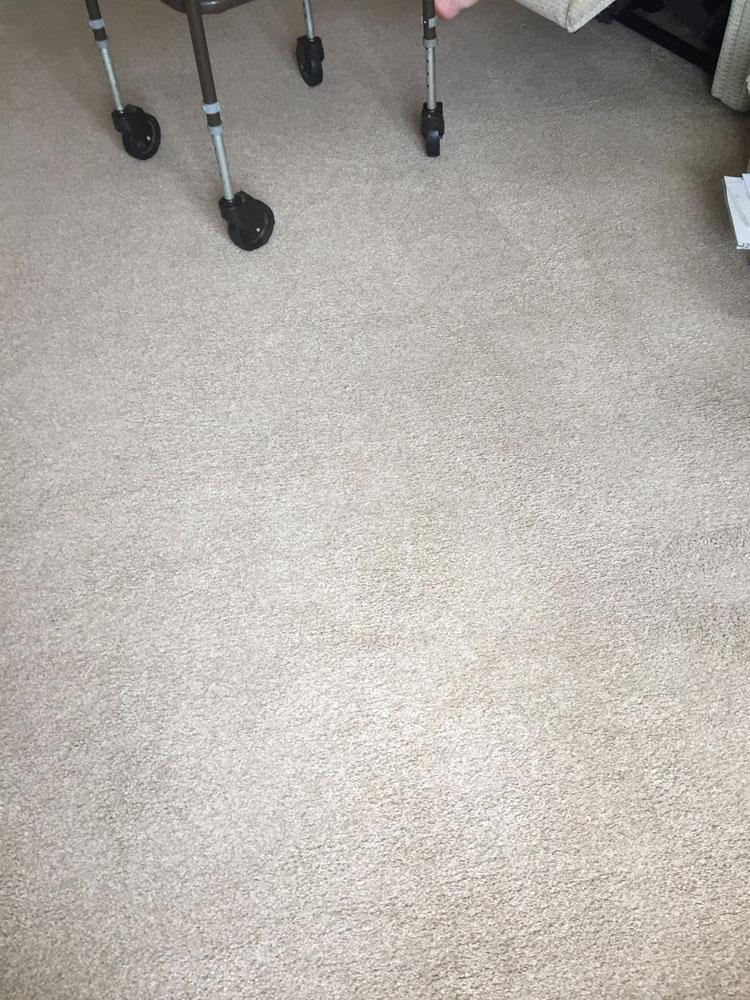 Professional Carpet Cleaning Warsash Park Gate Locks Heath